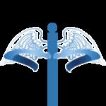 DSC_Dragon_HIPAA5